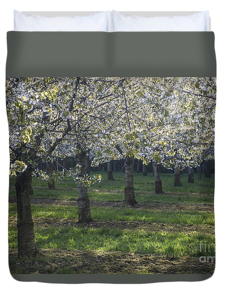 Duvet Cover featuring the photograph The Life Awakes 5 by Bruno Santoro