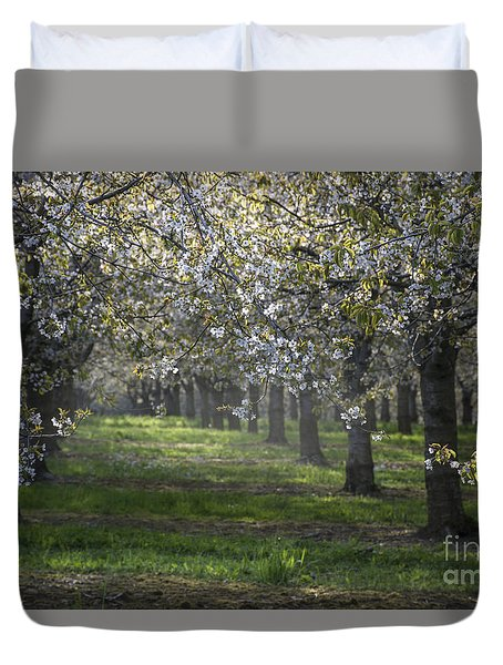 Duvet Cover featuring the photograph The Life Awakes 6 by Bruno Santoro