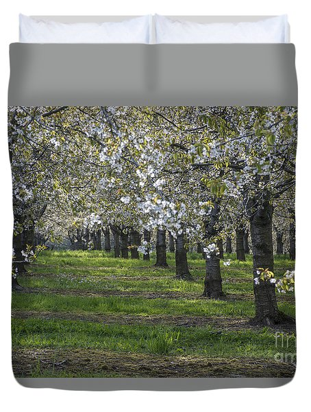 The Life Awakes 7 Duvet Cover