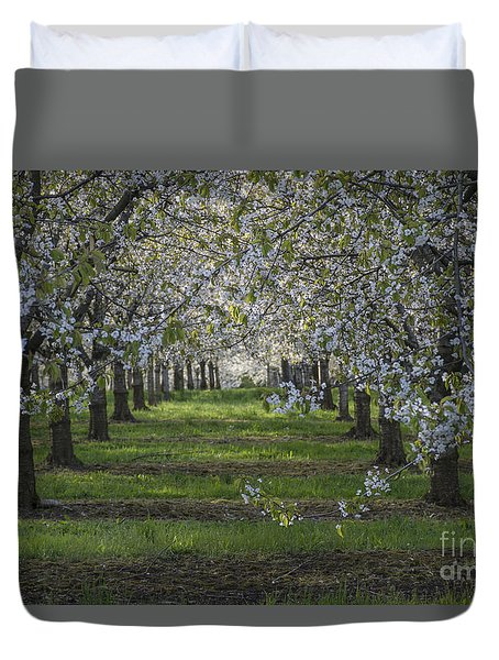 Duvet Cover featuring the photograph The Life Awakes 8 by Bruno Santoro