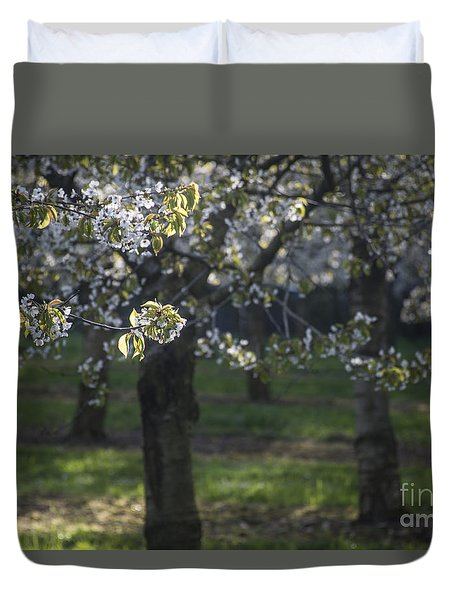 The Life Awakes3 Duvet Cover