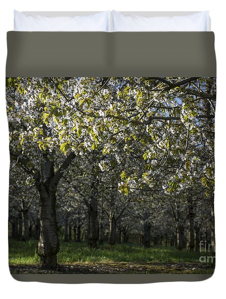 The Life Awakes4 Duvet Cover