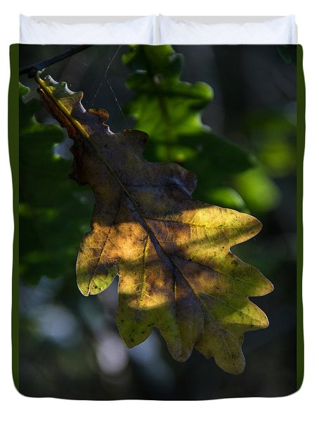 Duvet Cover featuring the photograph The Light Fell Softly by Odd Jeppesen