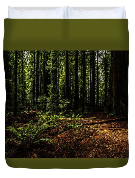 Duvet Cover featuring the photograph The Light In The Forest No. 2 by TL Mair