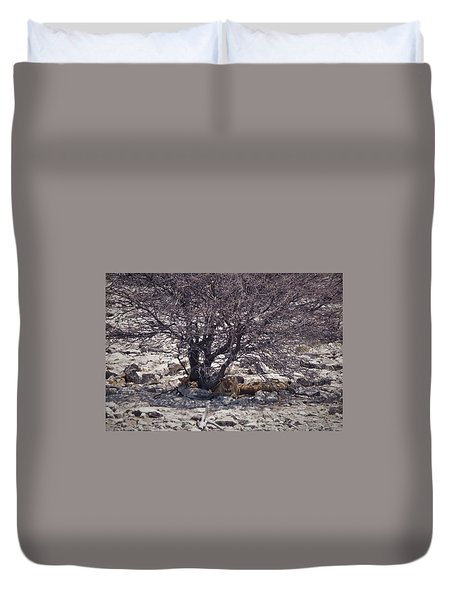 Duvet Cover featuring the photograph The Lion Family by Ernie Echols