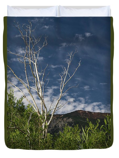 The Lonely Aspen  Duvet Cover