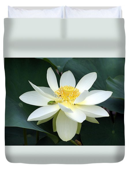 The Lotus Flower The Frog And The Bee Duvet Cover