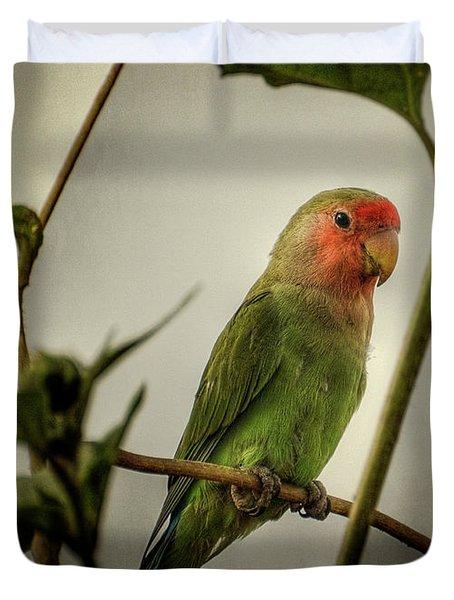 The Lovebird  Duvet Cover