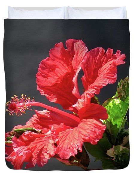 The Mallow Hibiscus Duvet Cover