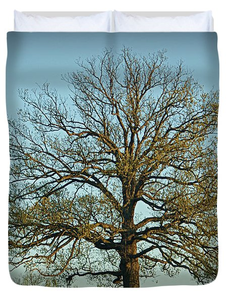 The Mighty Oak In Spring Duvet Cover