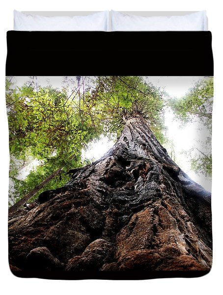 The Mighty Redwood Duvet Cover