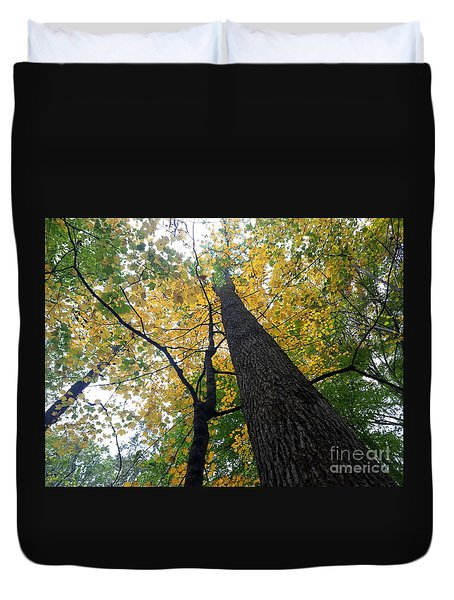 The Mighty Tulip Popular State Tree Of Indiana Duvet Cover