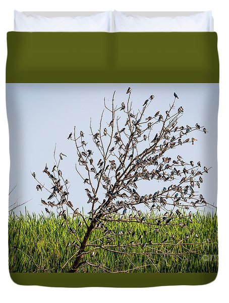 Duvet Cover featuring the photograph The More The Merrier- Tree Swallows  by Ricky L Jones