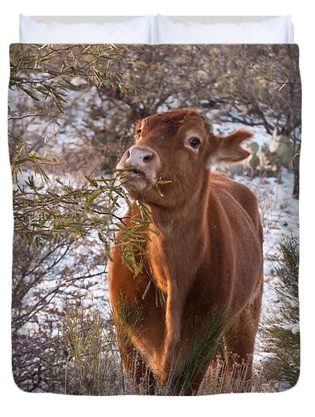 The New Years Cow Duvet Cover by Donna Greene