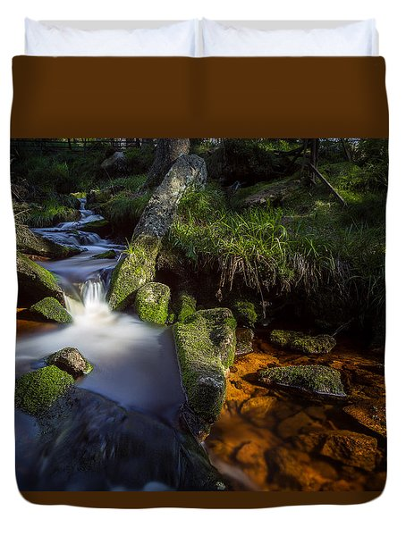 the Oder in the Harz National Park Duvet Cover by Andreas Levi