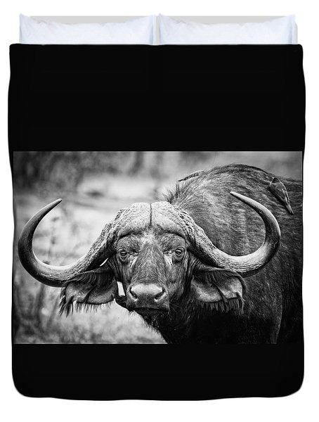 Duvet Cover featuring the photograph The Old Bull by Stefan Nielsen