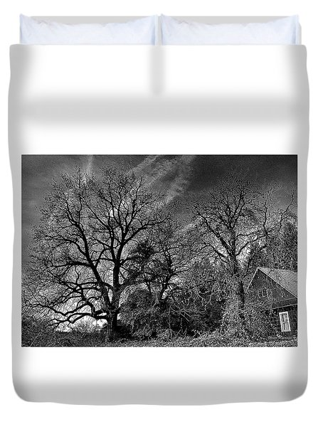 The Old Oak Tree Duvet Cover by Steve Warnstaff