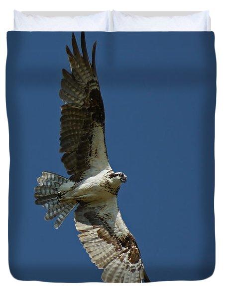 The Osprey Duvet Cover by Ernie Echols