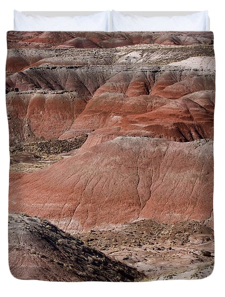 The Painted Desert  8024 Duvet Cover