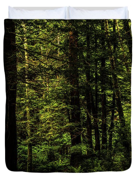 Duvet Cover featuring the photograph The Path by TL Mair