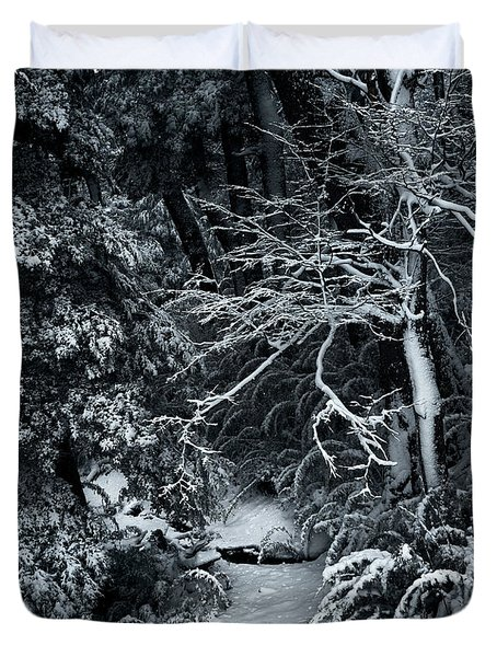 The Path To The Frozen Forest In The Argentine Patagonia Duvet Cover