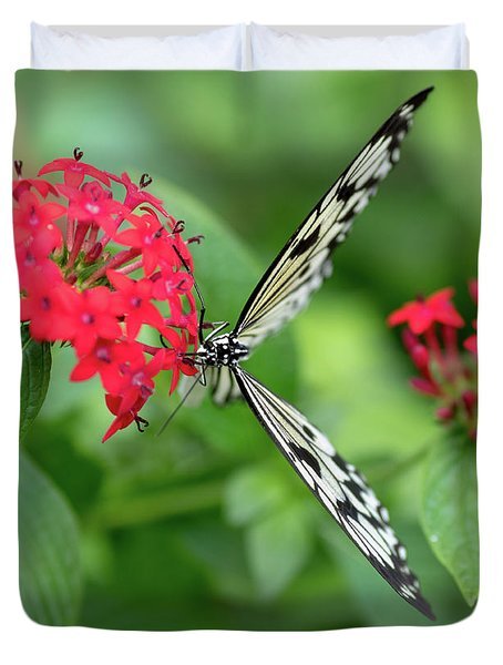 Duvet Cover featuring the photograph The Perfect Butterfly Land by Raphael Lopez