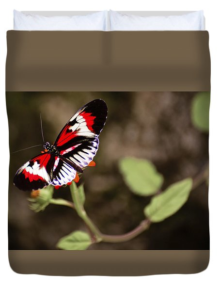Duvet Cover featuring the photograph The Piano Key 2 by Penny Lisowski