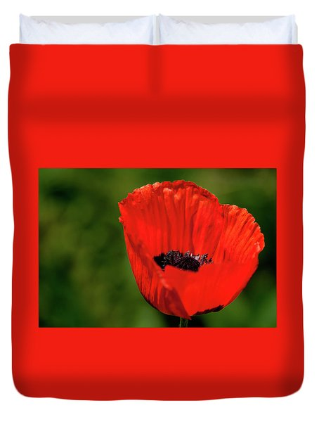 Duvet Cover featuring the photograph The Poppy Next Door by Onyonet  Photo Studios