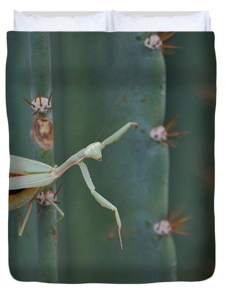 The Praying Mantis Duvet Cover by Donna Greene