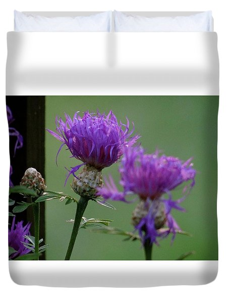 The Purple Bloom Duvet Cover