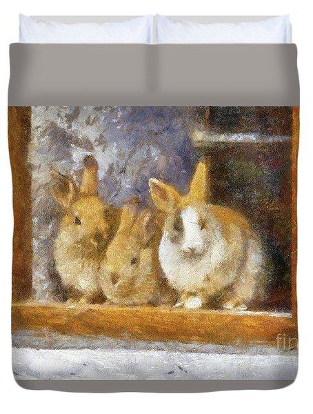 The Rabbit Window By Sarah Kirk Duvet Cover
