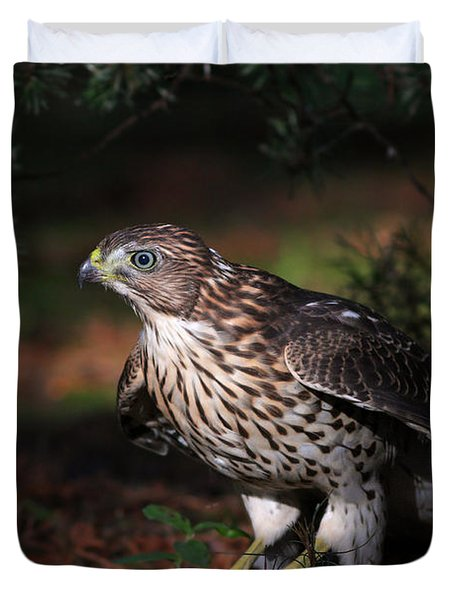 The Raptor Duvet Cover by Mircea Costina Photography