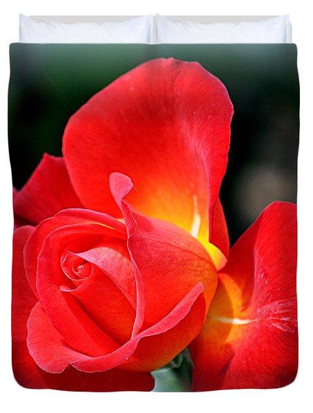 The Red Rose Duvet Cover