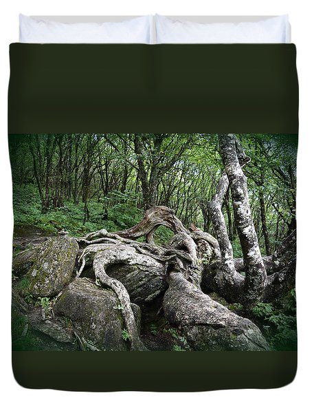 The Root Duvet Cover by Gary Smith