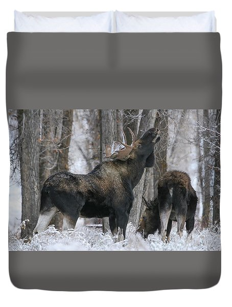 Duvet Cover featuring the photograph The Rut by Gary Hall