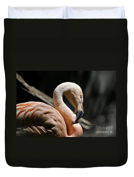 The Sacred Old Flamingoes Duvet Cover by Lois Bryan