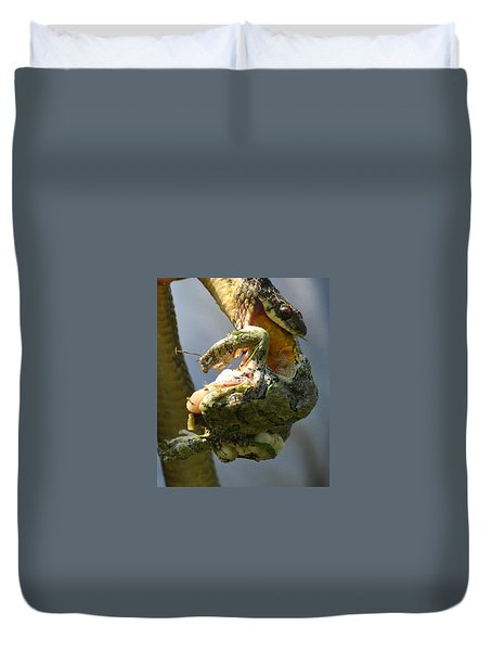 The Serpent And The Frog Duvet Cover