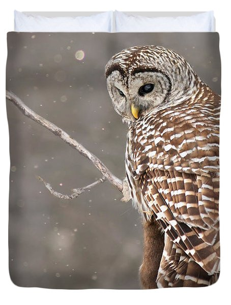 The Silent Hunter Duvet Cover by Mircea Costina Photography