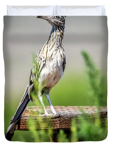 The Smug Roadrunner Duvet Cover