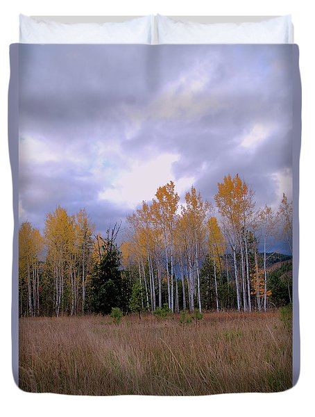 The  Song Of The Aspens 2 Duvet Cover by Victor K