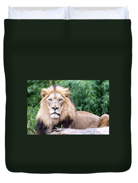 The Stare Down Duvet Cover