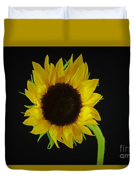 The Sunflower Duvet Cover by Ray Shrewsberry