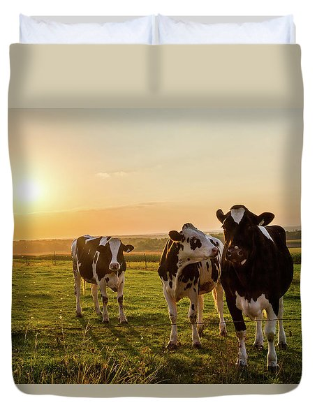 Duvet Cover featuring the photograph The Sunset Graze by Joel Witmeyer