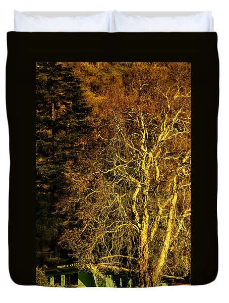 The Tree And The House Duvet Cover