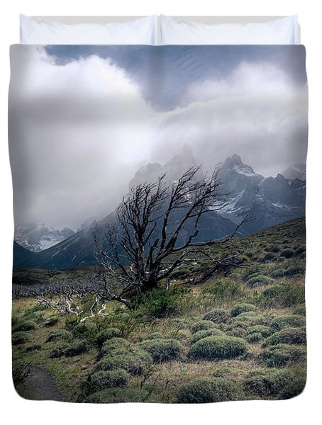 The Tree In The Wind Duvet Cover by Andrew Matwijec
