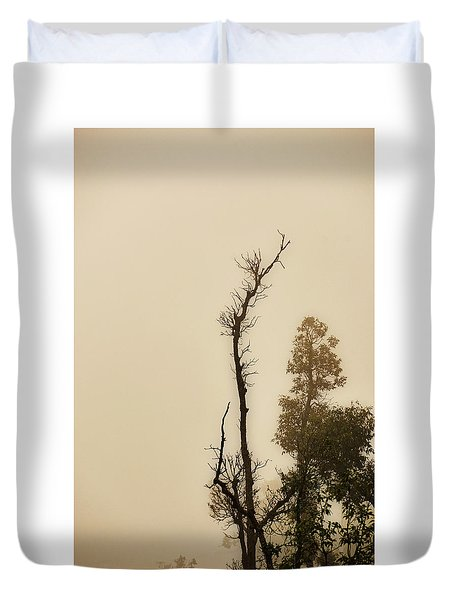 The Trees Against The Mist Duvet Cover by Rajiv Chopra