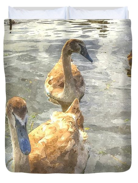 The Two Cygnets Duvet Cover