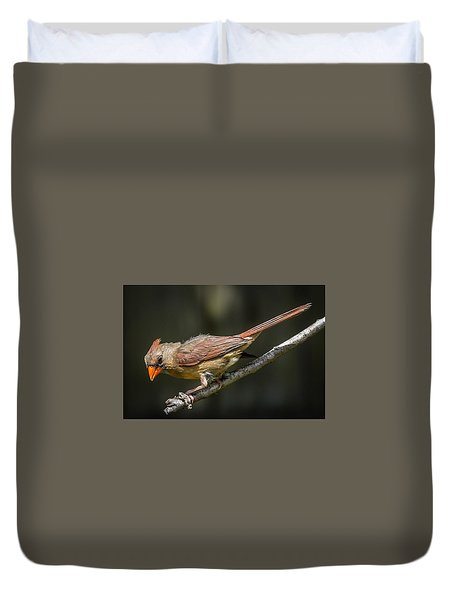 Duvet Cover featuring the photograph The Wet Look by Gregory Daley  PPSA