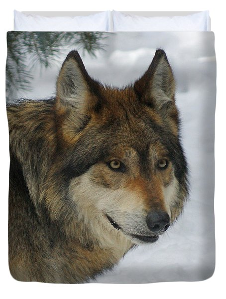 The Wolf 2 Duvet Cover by Ernie Echols