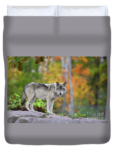 The Wolf. Duvet Cover